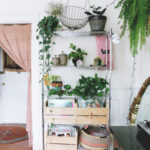 Wire shelving unit with plants