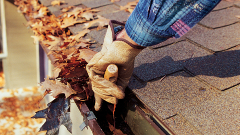 cleaning out leaves in gutters in the fall